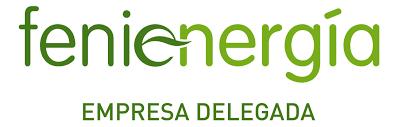 FENIE ENERGIA DELEGADO